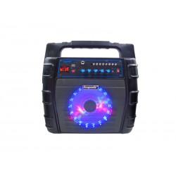 SPEAKER ECOPOWER EP-1202 - USB - CONTROLE - RADIO FM - BLUETOOTH