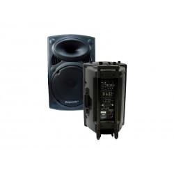SPEAKER ECOPOWER EP-1291 C/FM PROFISSIONAL