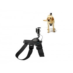 ACCESORIO GO-PRO (ADOGM-001) DOG MOUNT