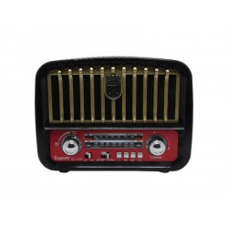 RADIO ECOPOWER EP-F95B - BATERIA - USB - BLUETOOTH - SD