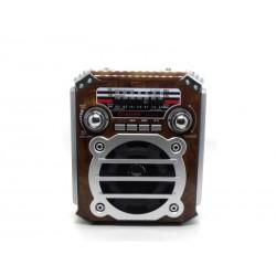 RADIO ECOPOWER EP-F91B - BATERIA - SD - USB - BLUETOOTH