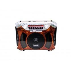 RADIO ECOPOWER EP-F83 - BATERIA - USB - SD