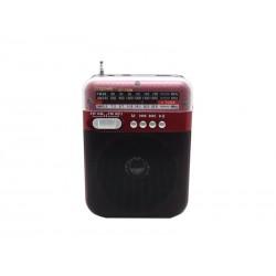 RADIO ECOPOWER EP-F99 - BATERIA - USB - CARTAO SD - BIVOLT