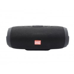 SPEAKER ECOPOWER EP-3852 - USB - SD - BLUETOOTH