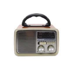 RADIO ECOPOWER EP-F121 - BATERIA - USB - SD