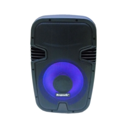 SPEAKER ECOPOWER EP-305 - PROFISSIONAL - 2 MICROFONE - BLUETOOTH - 12 POLEGADAS