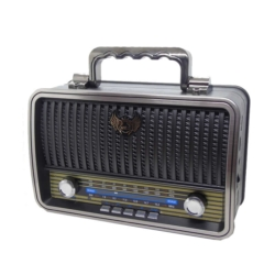 RADIO ECOPOWER EP-F216B - AM-FM - BLUETOOTH - USB