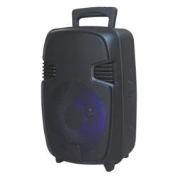 """SPEAKER LIGE-F3 8"""" REC/USB/TF/CONT/BLUETOOTH"""