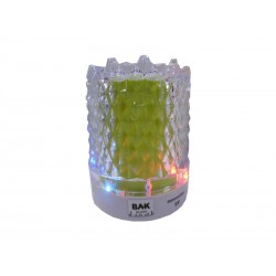 SPEAKER BAK BK-S299 - USB -SD - VERDE - MINI - COM PISCA
