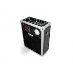 SPK BAK BK-S888K PROFIS/KA/FM/220V/12V