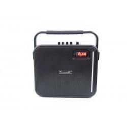 SPEAKER ECOPOWER EP-1200 - USB - SD - RADIO FM - BLUETOOTH