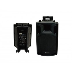 SPEAKER ECOPOWER EP-200 BLUETOOTH PROFISSIONAL 2V.