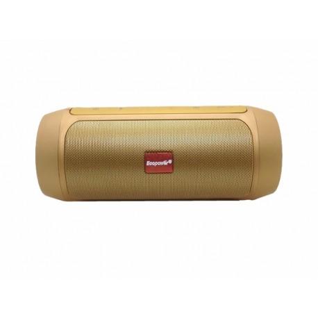 SPEAKER ECOPOWER EP-2307 - USB - MSD - RADIO FM - BLUETOOTH