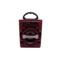 SPEAKER ECOPOWER EP-3820 - USB - CARTAO SD - BLUETOOTH