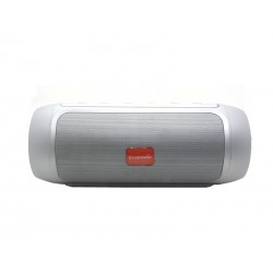 SPEAKER ECOPOWER EP-3831 - USB - BLUETOOTH - SD